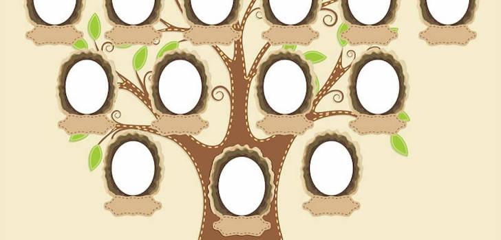 Генеалогическое древо семьи своими руками фото 550